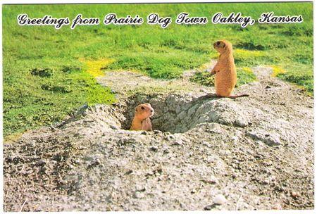 Postcard 013